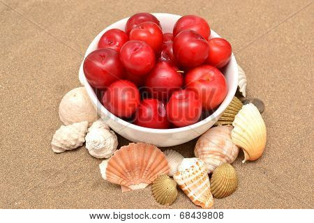 Red plums and shells on sand