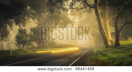 A car zooms by on a misty morning in the hills