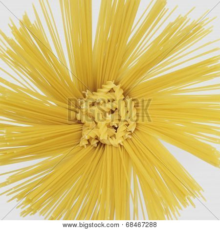 Radial Spaghetti And Rotini