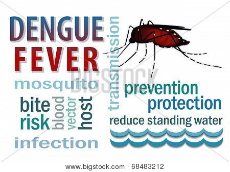 Dengue Fever Word Cloud