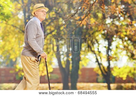 Senior gentleman walking with a cane in a park