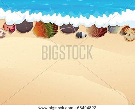 Pebble And Seashells On The Sand