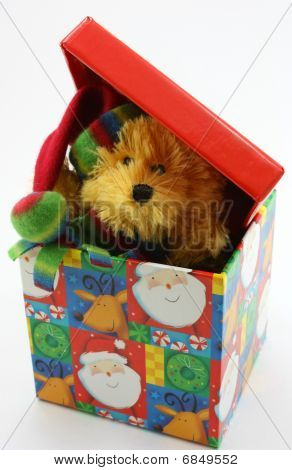 Stuffed bear toy peaking out of Christmas box