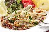 stock photo of squid  - grilled squids with salad  - JPG