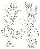 stock photo of marmosets  - set of cheerful circus animals  - JPG