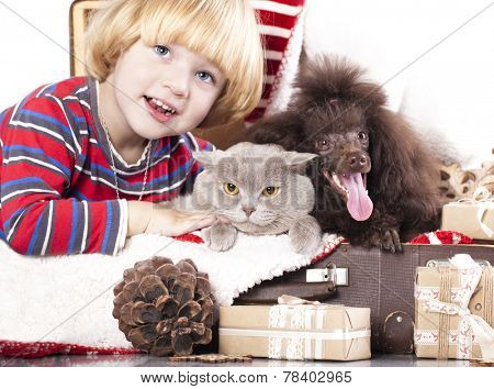 dog and cat and little boy