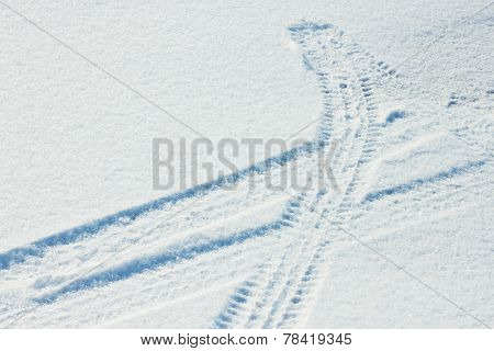 Tire tracks in fresh snow