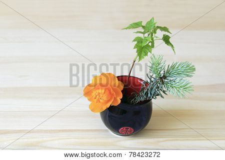 Orange Flower, Branches Of Blue Spruce And Shrubs In The Blue-red Cup