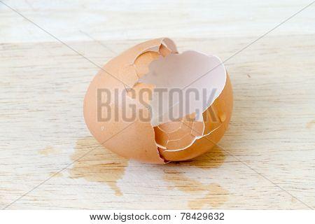 Egg Shells On The Wooden Floor.