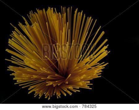 Artistic Pasta IV