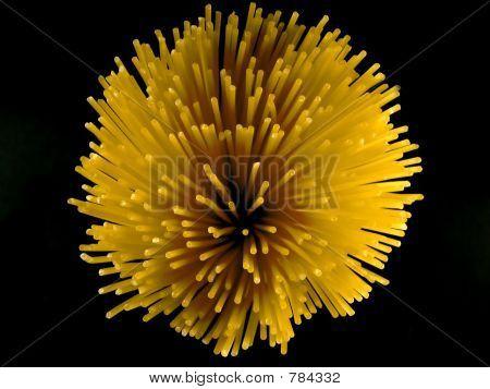 Artistic Pasta XI