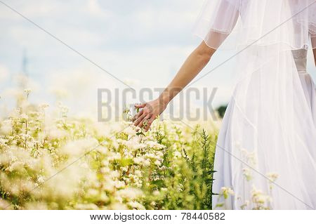Bride In Nature