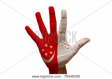 Palm Flag Singapore