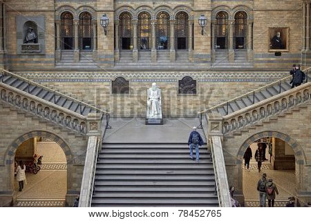 LONDON, UK - DECEMBER 11: High angle shot of staircase with statue of Charles Darwin at Natural History Museum. December 11, 2014 in London.