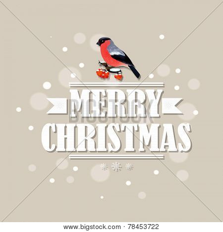 Vintage Christmas Card With Bullfinch