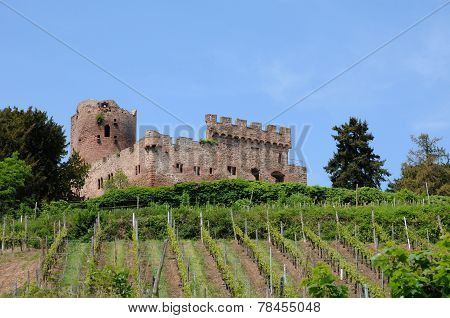 The Castle Of Kintzheim In Alsace