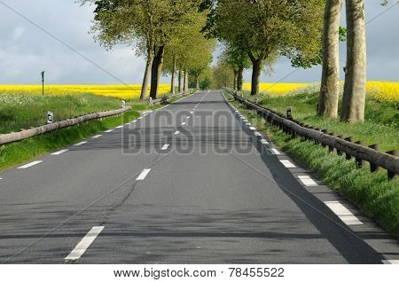 Ile De France, Maudetour, A Country Road In Val D Oise