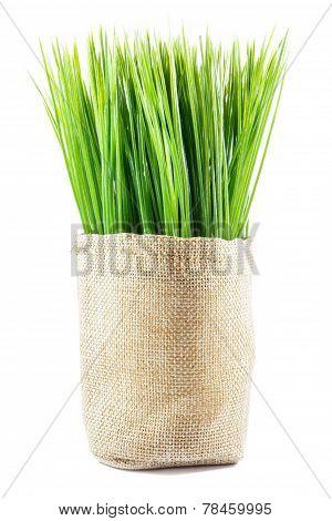 Artificial Grass In Sack