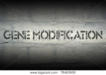 Gene Modification