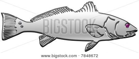 Chrome Redfish Illustration