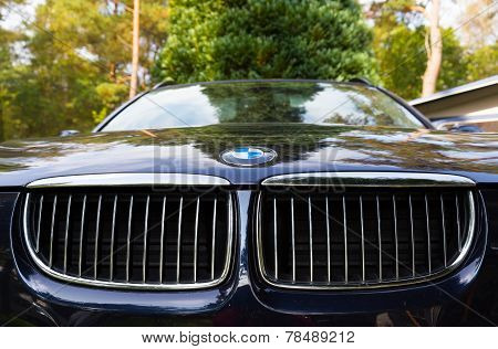 Characteristic BMW Kidney Grille