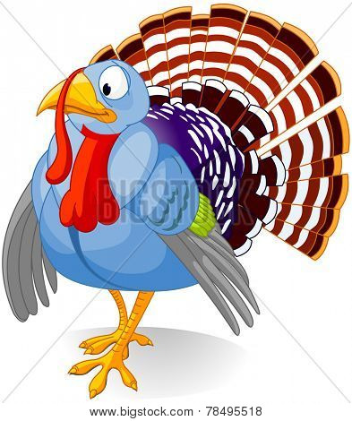 Cartoon turkey strutting with plumage, isolated on white background