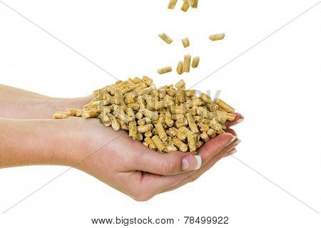 alternative energy for heating. heating with pellets already on the environment.