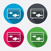 stock photo of long-fish  - Aquarium sign icon - JPG