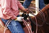 stock photo of brahma-bull  - A cowboy waits to compete in the roping competition - JPG