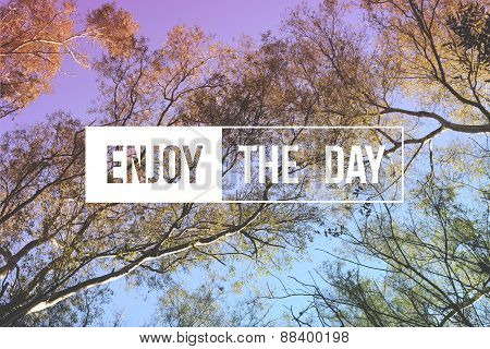 Enjoy The Day Quote Concept Tree Background
