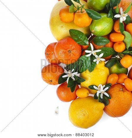 Corner border of citrus fruits mixed close up  top view background