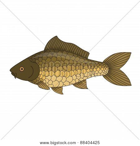 Cartoon Bass - Isolated Hand Drawn Fish Illustration