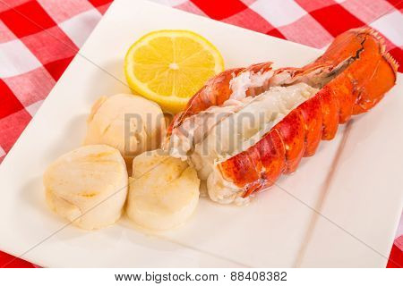 Lobster And Scallop Dinner