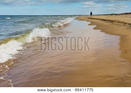 Beach Landscape. Baltic Coast.
