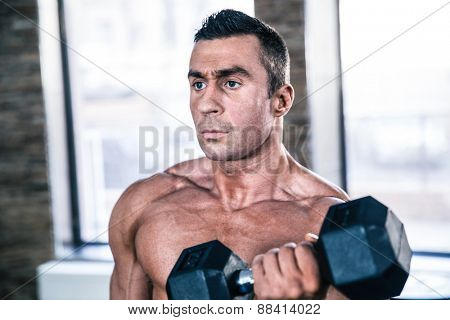 Muscular man workout with dumbbell at gym