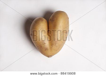 Heart shaped Potato - closeup image on white background.