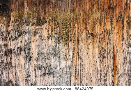simple spotted brown aged wooden board natural background
