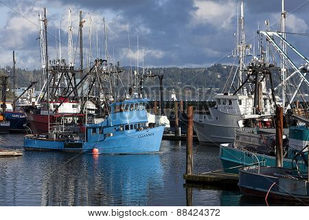 Docked fishing boats.