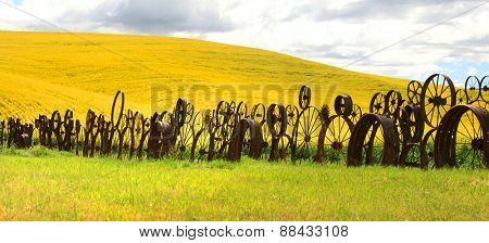 Panoramic view of fence of wheel rims against rapeseed farms