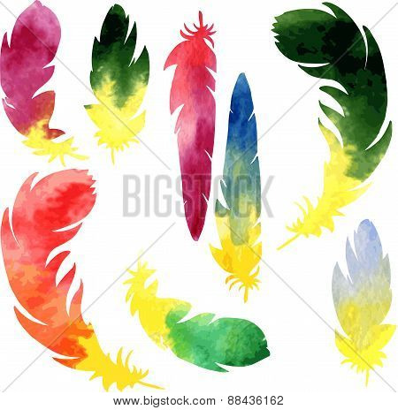 set of watercolor silhouette feathers
