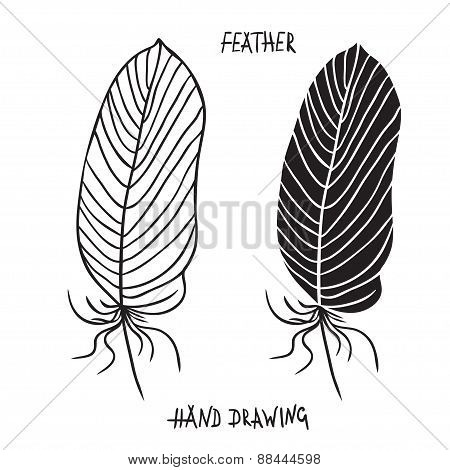 Hand Drawn Silhouettes Of Feathers In Black And White. Vector Illustration