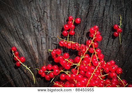 Red Currant Fruit Scattered Wooden Bench Table