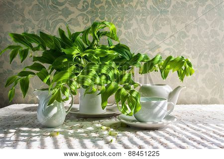Still Life Bouquet Polygonatum White Crockery