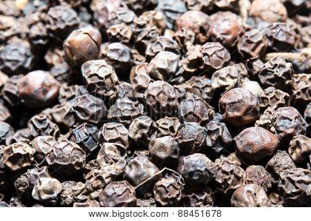 the many Black peppercorns