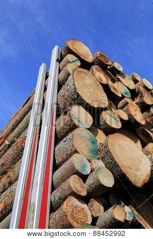 Logs Stacked Up On A Logging Truck Trailer With Blue Sky