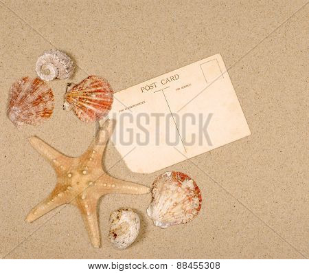 Seashore Scene With Starfish And Postcard