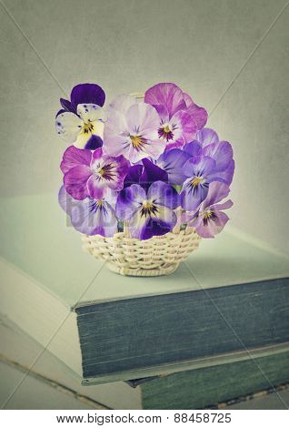 Viola flowers in a basket