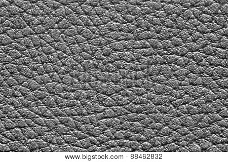 Texture Friable Leather Of Black Color
