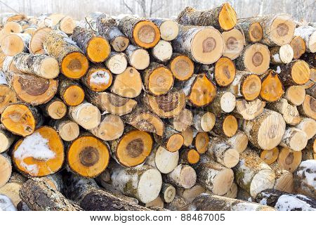 Pile of chopped fire wood prepared for winter, background