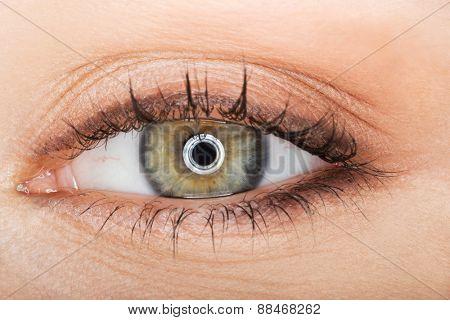 Macro image of female green eye